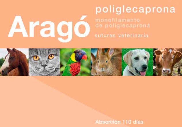 Poliglecaprona
